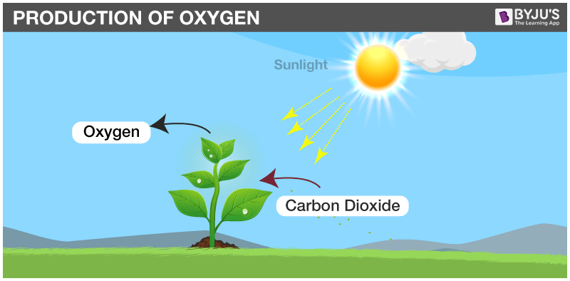 Production of Oxygen