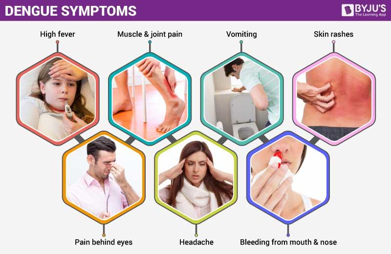 Symptoms ofDengueFever