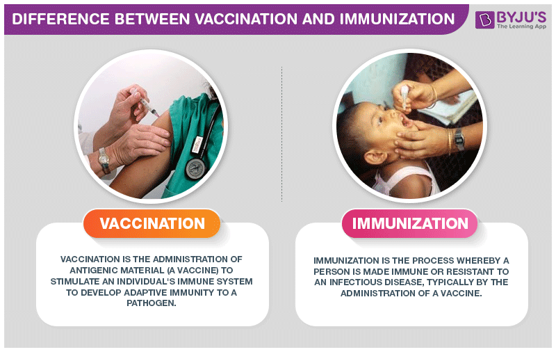 Difference Between Vaccination And Immunization