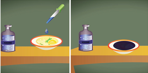 Capture4 Tests for Major Nutrients