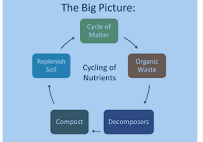 big_picture How Nutrients are Replenished in the Soil