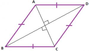 t3-300x171 Types of Parallelogram