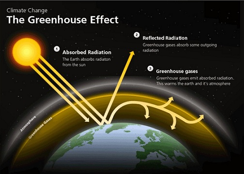 G1 Greenhouse Effect and Global Warming