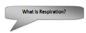 What-is-respiration-300x117 Respiration in Living Organism