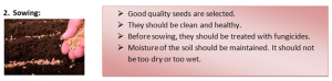 Sowing-300x74 Crop production and management