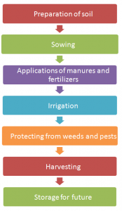 Practices-of-crop-production-174x300 Crop production and management