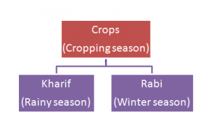 Cropping-season-300x171 Crop production and management