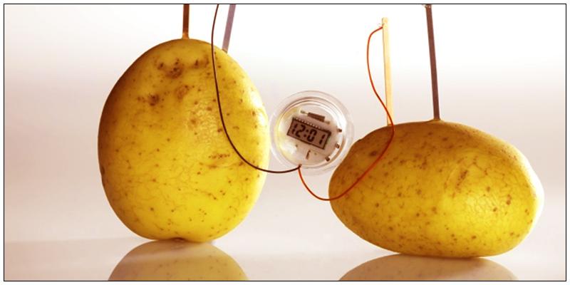 91 How to make a Potato Clock?