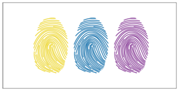 Fingerprint Science Projects for Class 10