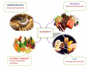 Nutrients-Balanced-Diet-300x232 Balanced Diet-Nutrients and Deficiency Diseases