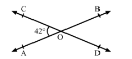 https-lh4-googleusercontent-com-3oklkxhashsd0d3c Chapter-13: Lines and Angles