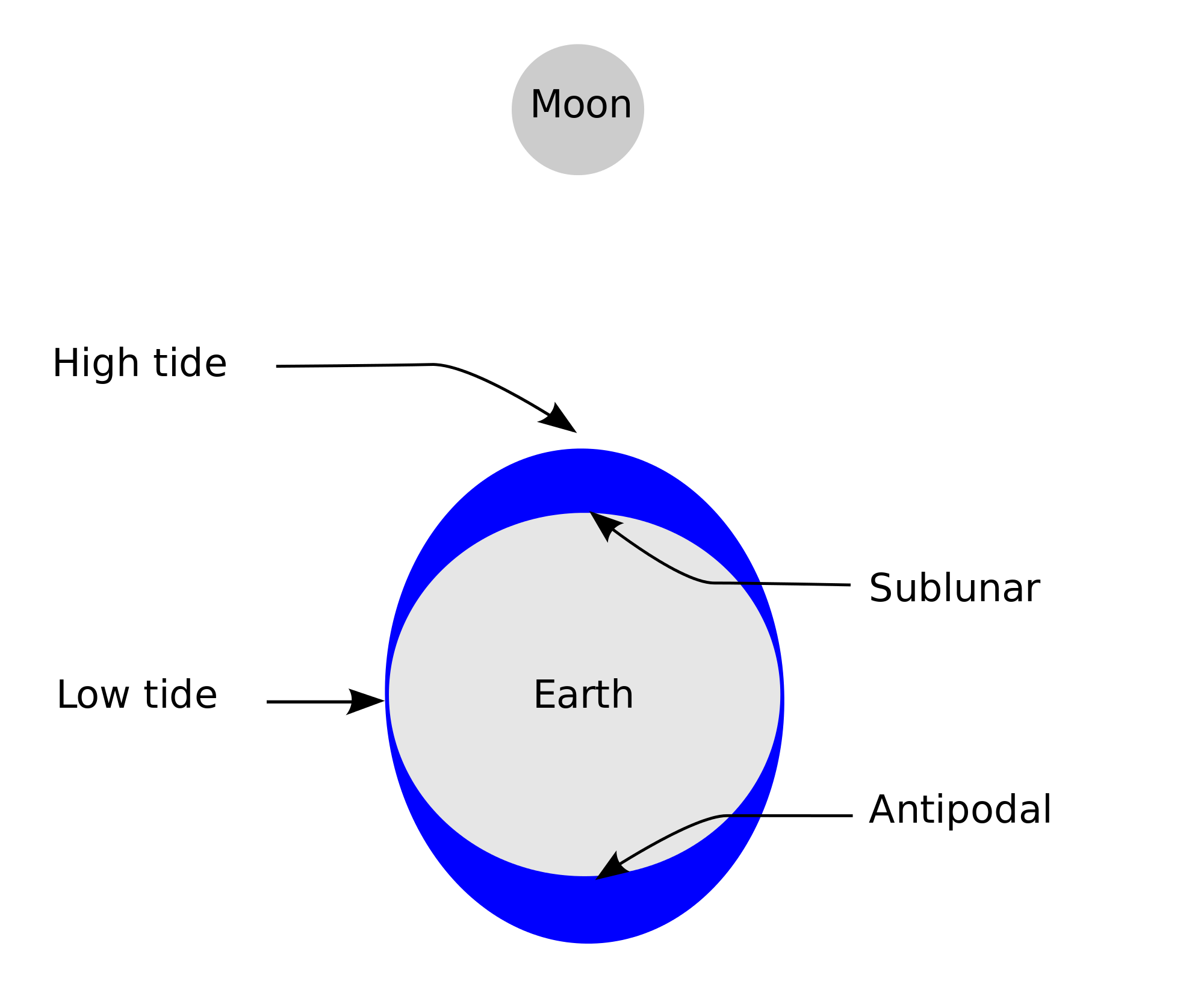 Gravitational-Force Why doesn't the moon fall into the Earth?
