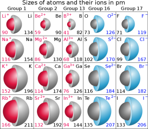 Atomic and ionic radii of S group elements