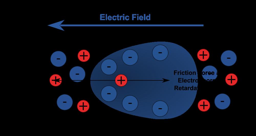 Electrophoresis - Properties Of Colloids