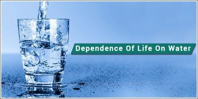 Dependence of life on water