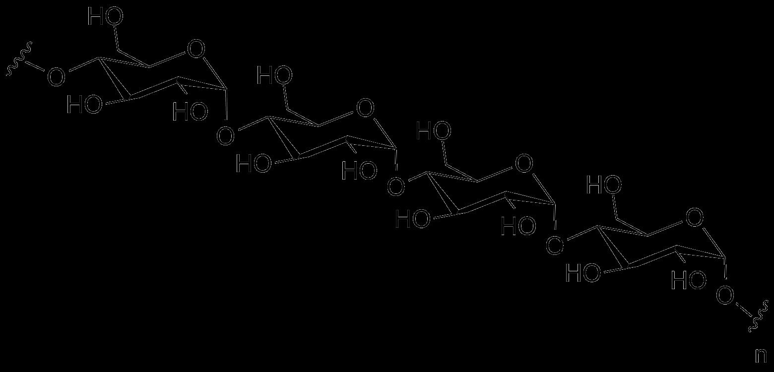 Amylose - Complex Carbohydrates