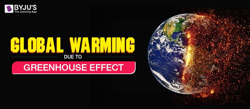 The greenhouse effect essays