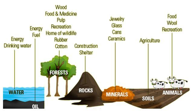 Natural Resources Types Of Natural Resources Renewable