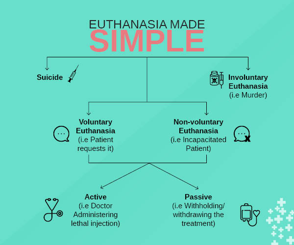 essay on voluntary active euthanasia