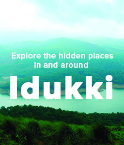 BYJUite Nidhi tells us how to explore the 'spice district' Idukki in Kerala.
