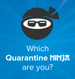 Which Quarantine Ninja defines you?