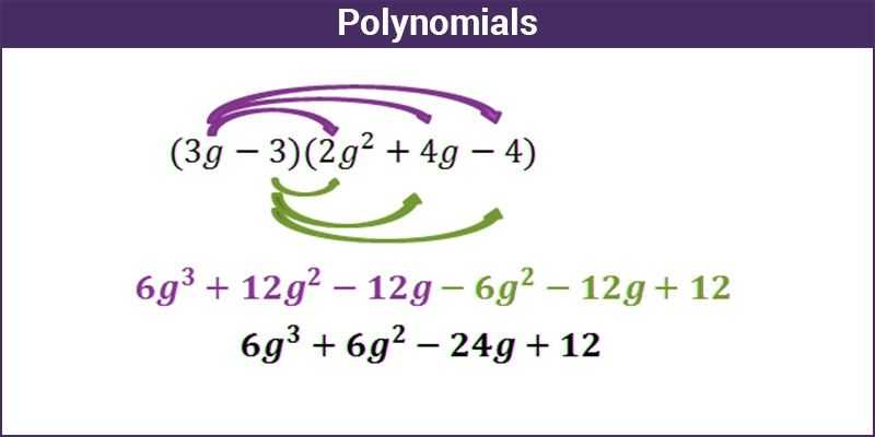 Polynomials Equations Expressions Their Types And Operations