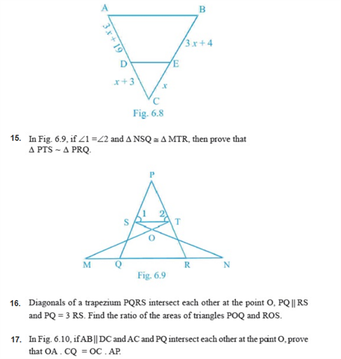 important questions class 10 maths chapter 6 triangles 11