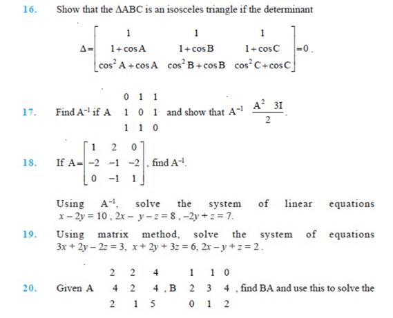 important questions class 12 maths chapter 4 determinants 3