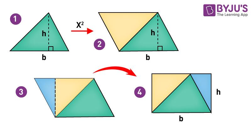 Right Angle Base : Right angled triangle area type of with