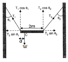 system of particles and rotational motion class 11 notes pdf