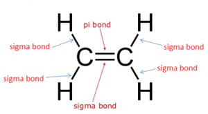 Pi Bond Lewis Structure
