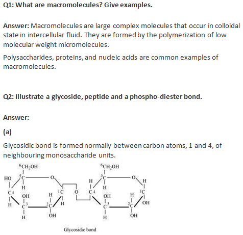 Ncert solutions for class 11 biology chapter 9 biomolecules ncert solutions class 11 biology biomolecules malvernweather Choice Image