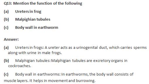 pdf biology 11 chapter 7 answers