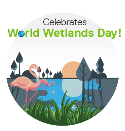World Wetlands Day- Appreciating our Eco Warriors!