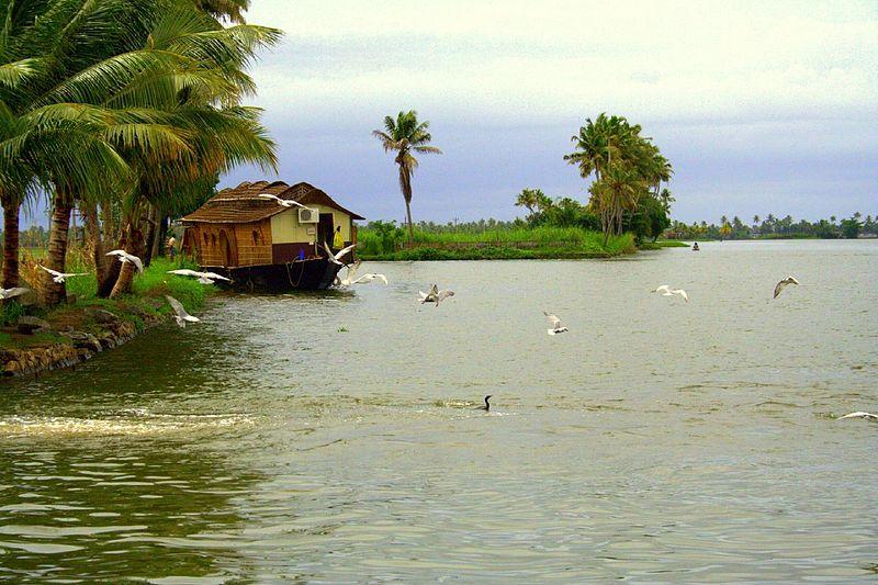 Vembanad Wetland, Kerala