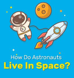 How Do Astronauts Live In Space?