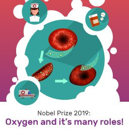 What did winners of the Nobel Prize 2019 for medicine find?