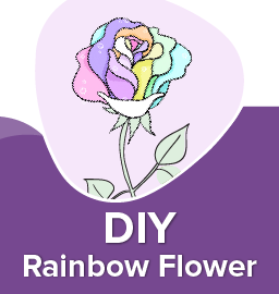One flower with all the colors – DIY Rainbow Flower