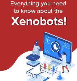 Meet the first living robot! – Xenobots