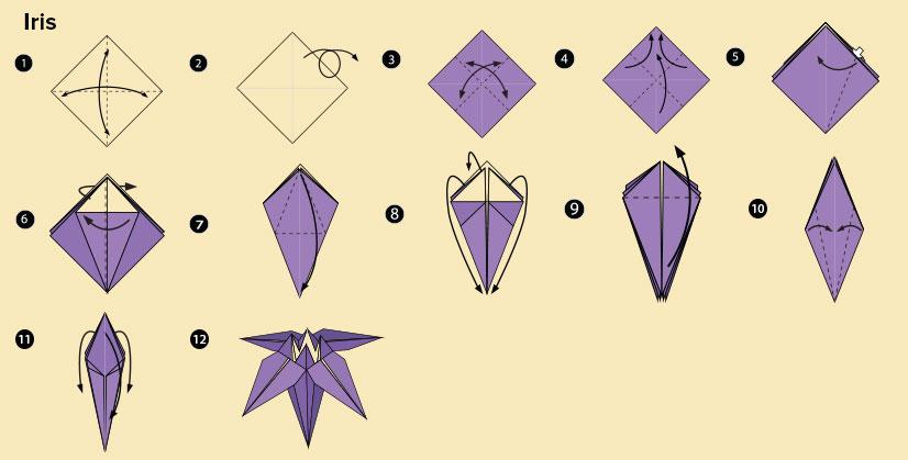 DIY Origami Iris flower