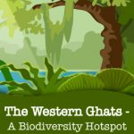 Exploring The Western Ghats, India's biodiversity hotspot!