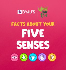Weird, but True: Can you make sense of your senses?