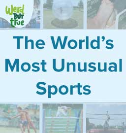 We bet you didn't know about these unusual Sports!