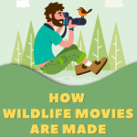 Nature, Camera, Action! How Wildlife Films Are Made