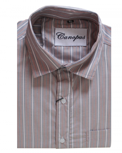 Canopus white and grey Striped Shirt