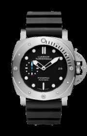 PAM1305