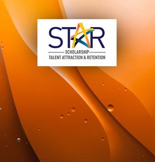 Scholarship Talent Attraction and Retention (STAR)