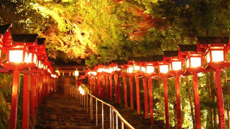 "〈1Day Tour〉Ride on ""Eizan Electric Railway"" with Autumn Leaves Tunnel"