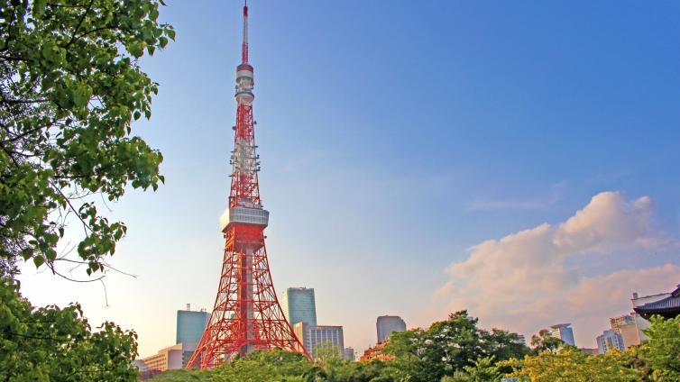〈1Day Tour〉Private Tokyo Grand Full Day Tour with lunch