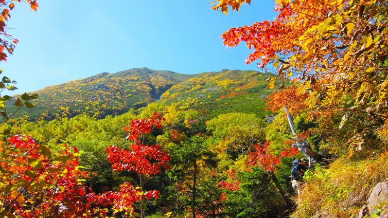 〈1Day Tour〉Nikko Tour with Lunch ~Nikko Toshogu Shrine ,Lake Chuzenji, Kegon Falls~